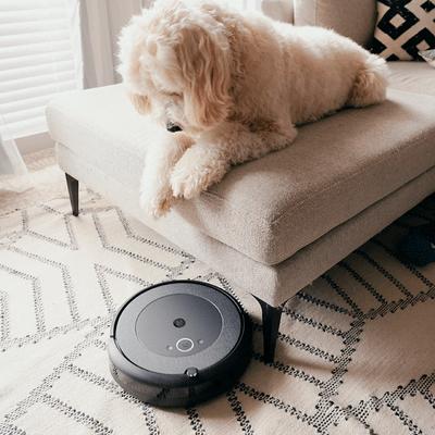 iRobot-Aspiradora-Pelos-Mascota